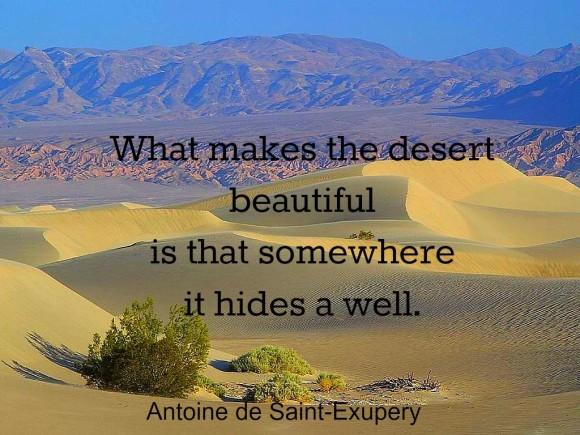 Desert Hides a Well